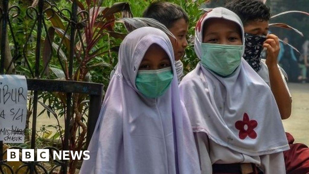Rainforest fires trigger smog alerts