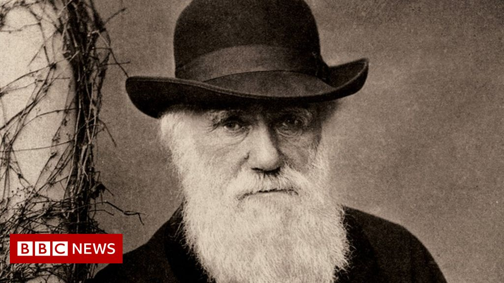 Charles Darwin: Notebooks worth millions lost for 20 years