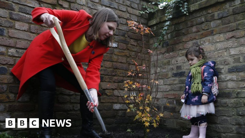 General election 2019: Tories and Lib Dems in rival tree-planting pledges