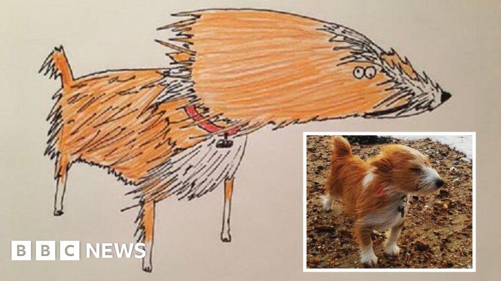 'Rubbish' pet portraits raise £5k for homeless
