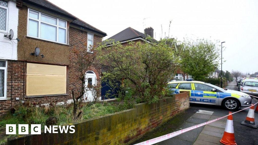 Hither Green burglar stabbing: Mounted police patrol area