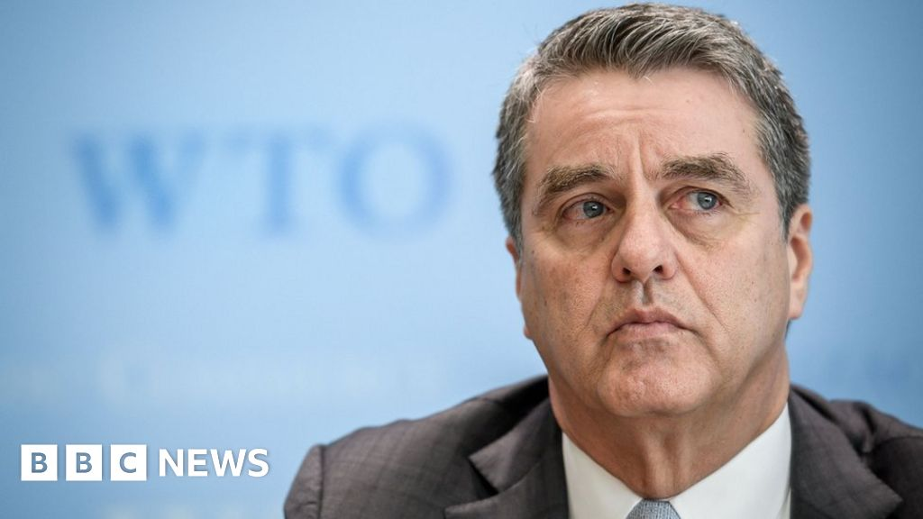 WTO chief: 'months' needed to fix disputes body