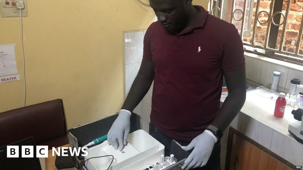 Africa's potential 'game changer' in the fight against malaria