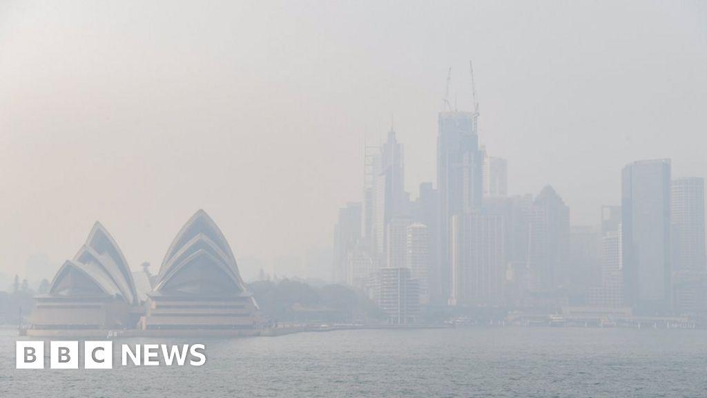 Sydney smoke: Residents 'choking' on intense bushfire pollution
