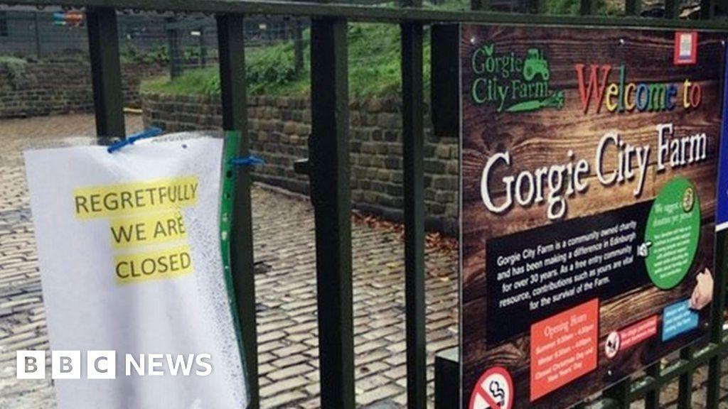 Gorgie City Farm: 'Credible' charities line up to take over