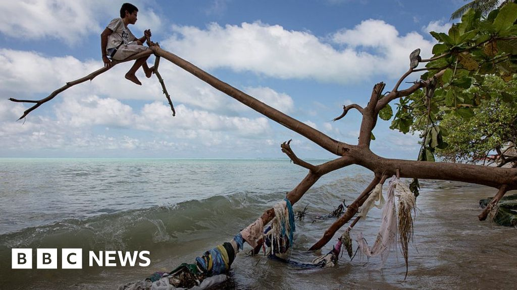Climate refugees can't be forced home - UN