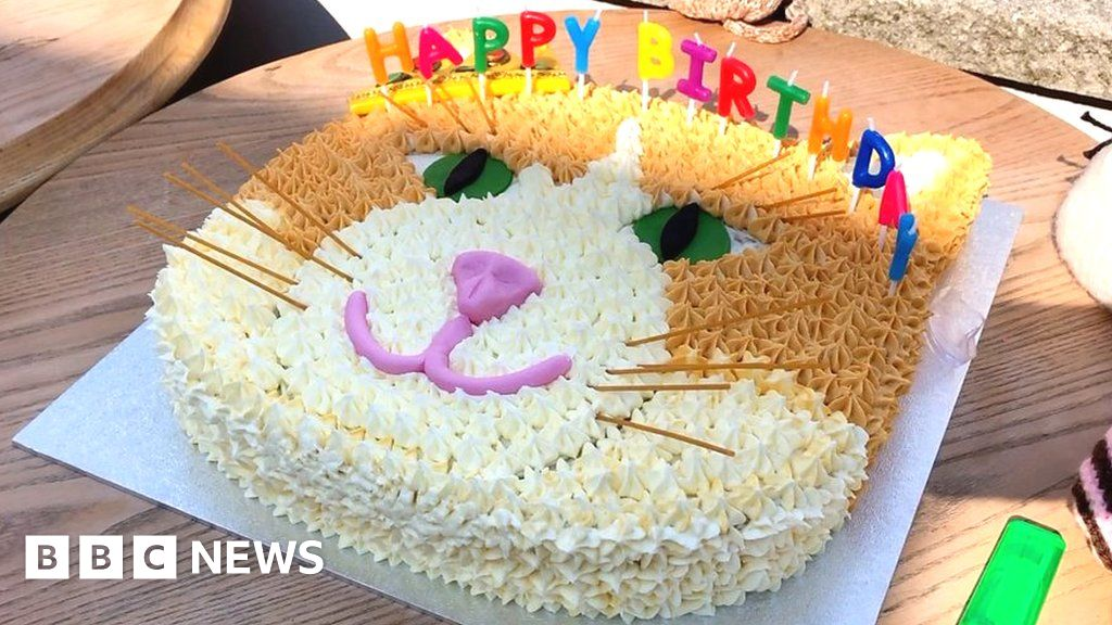 Surprising King Of Ruddington Cat Shuns 10Th Birthday Party Bbc News Birthday Cards Printable Nowaargucafe Filternl
