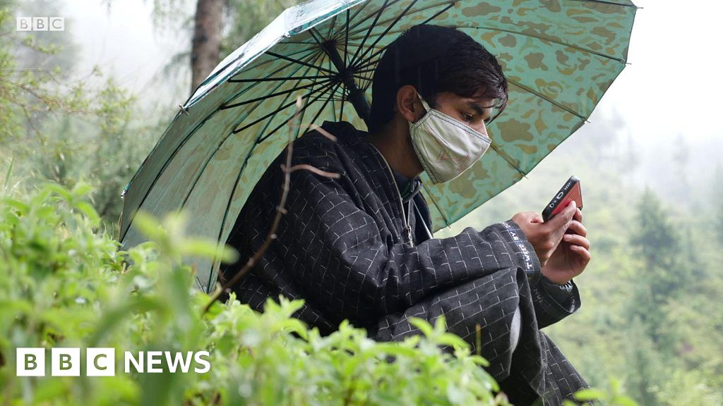 Education was disrupted: Kashmiri students climb the mountain to cross the digital divide