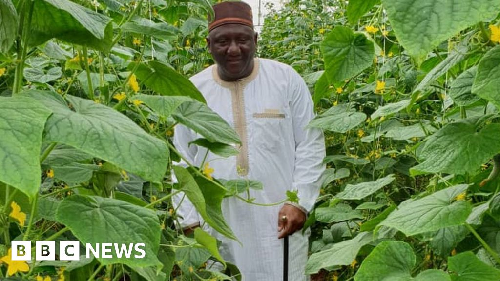 Nigeria's farmer king goes for growth