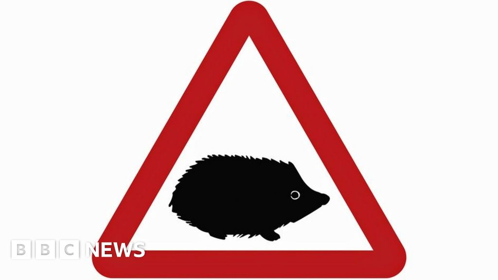 Hedgehog features in new road warning sign
