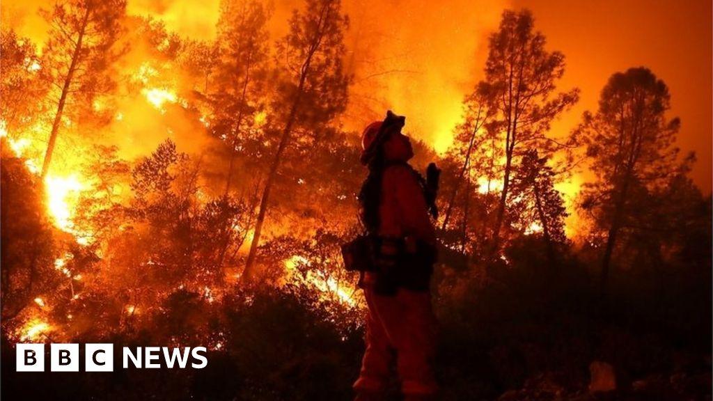 California Wildfires: Verizon Throttled Data During Crisis