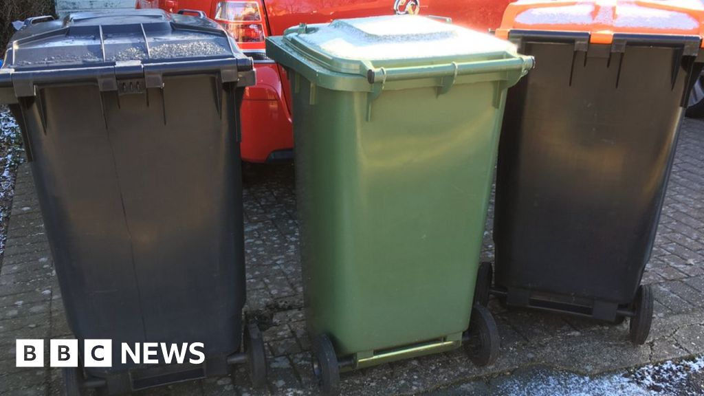Three-week collection of black containers in Bedfordshire on hold - BBC News