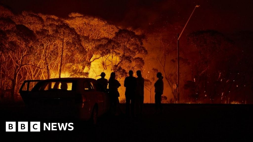 Australia bushfires: Fundraiser reaches A$20m in 48 hours