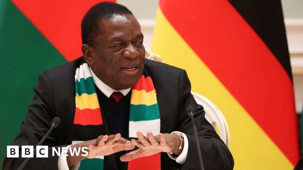 Zimbabwe leader abandons trip amid unrest