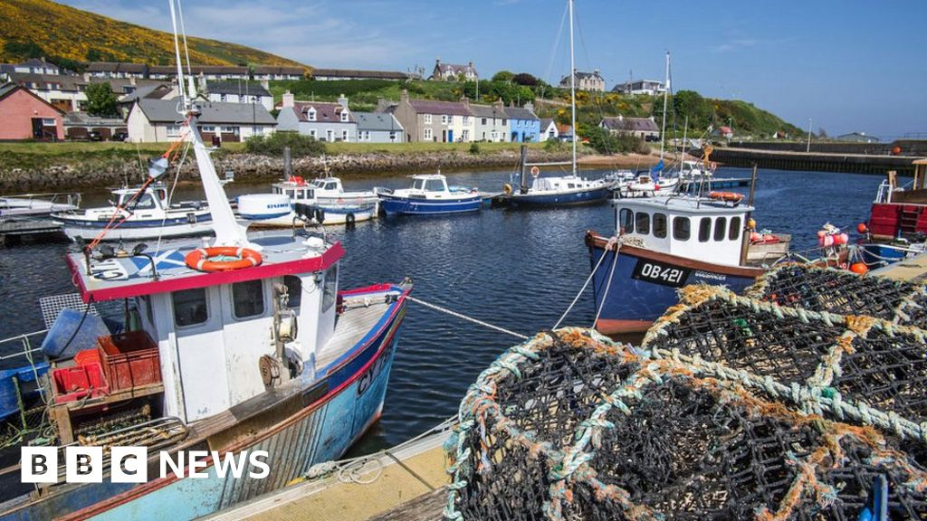 EU fishing rules: Did the UK throw away a million tonnes of fish?