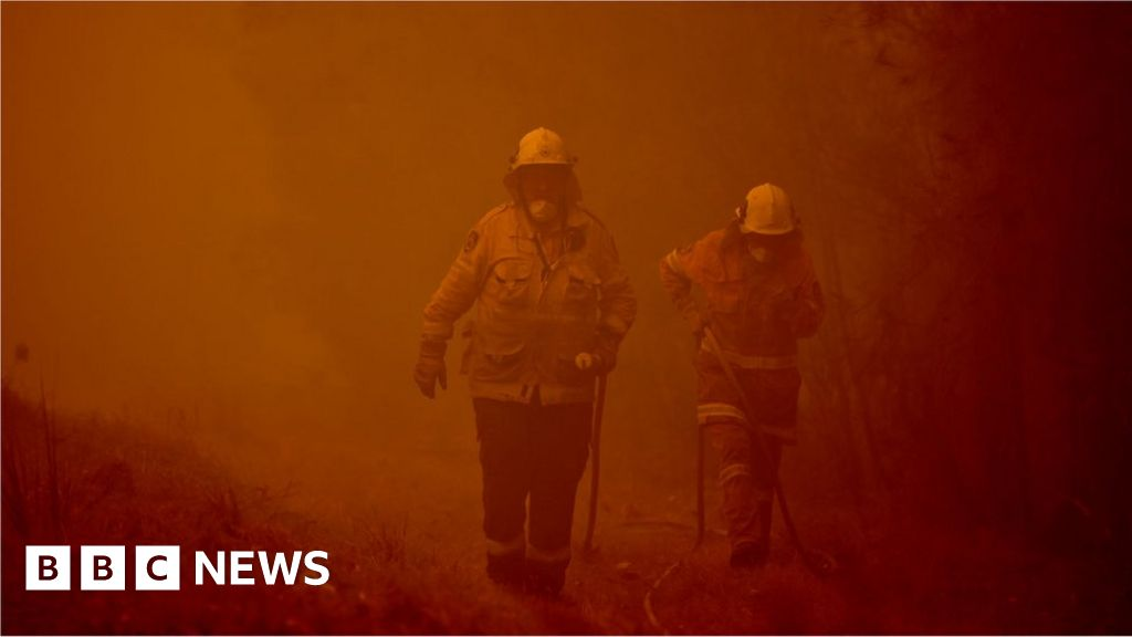 Australia fires: what has been the reaction of the world to the crisis