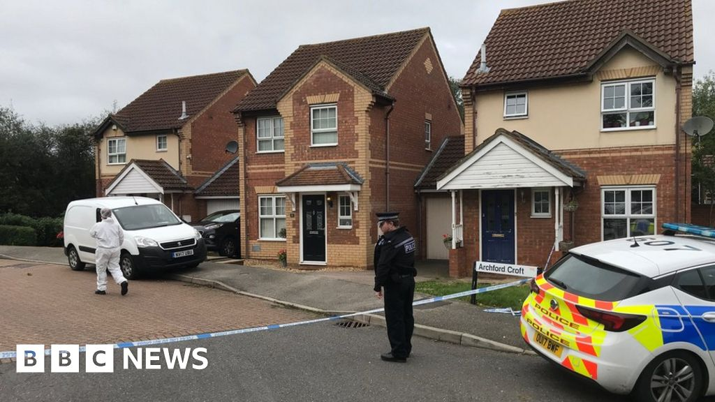 "Milton Keynes stabbings: killings ""part of limited, targeted attacks"""