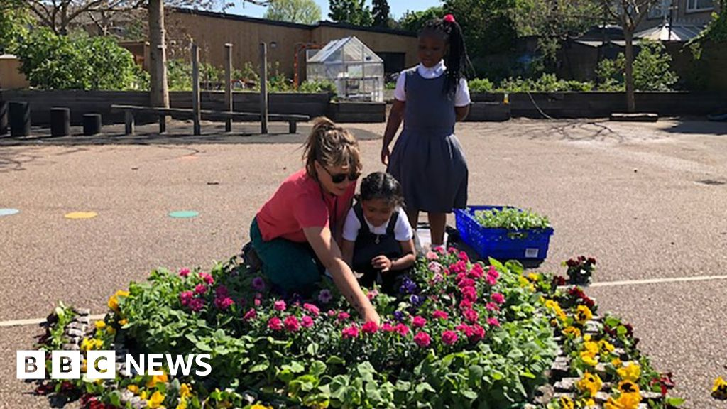 Tiny fraction of 'at risk' children attending schools