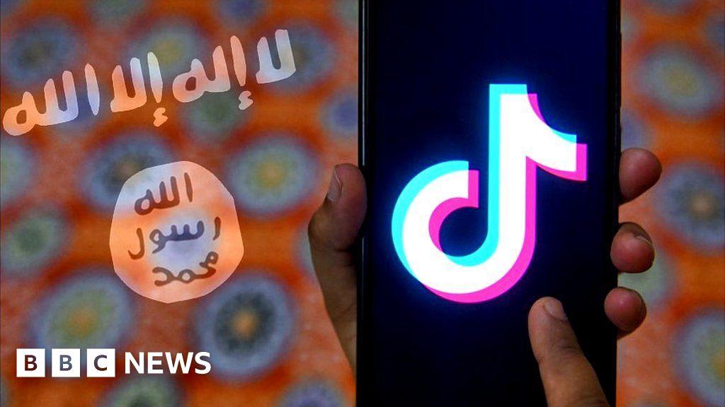 TikTok used by Islamic State to spread propaganda videos