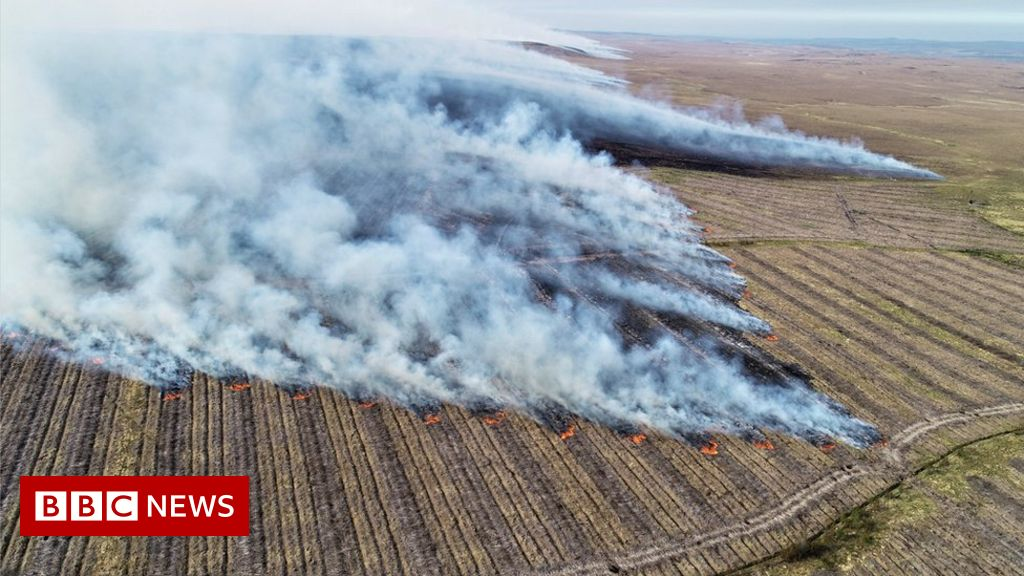 Huge Flow Country wildfire 'doubled Scotland's emissions' - BBC News