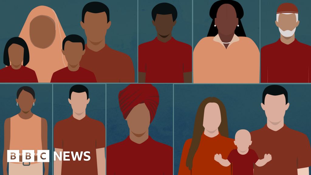 BBC Briefing on immigration: How can I use it?