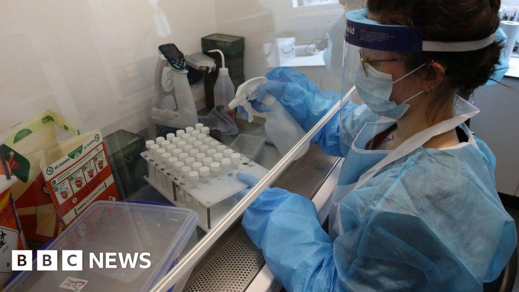 Europe coronavirus resurgences alarm WHO thumbnail