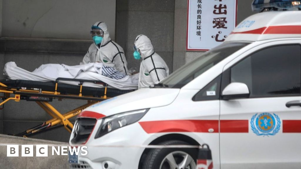 New virus death as China confirms human transfer