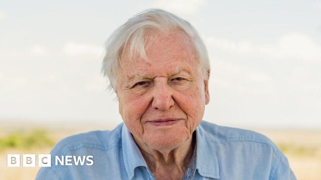 Climate change: Sir David Attenborough in  act now  warning