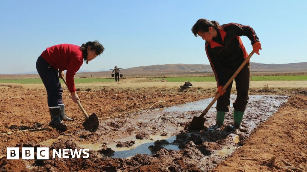 North Korea suffers worst drought in decades