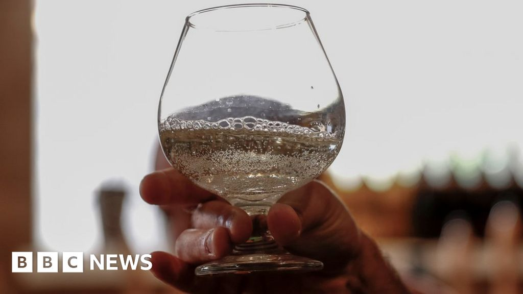 Israeli researchers brew 'ancient beer'