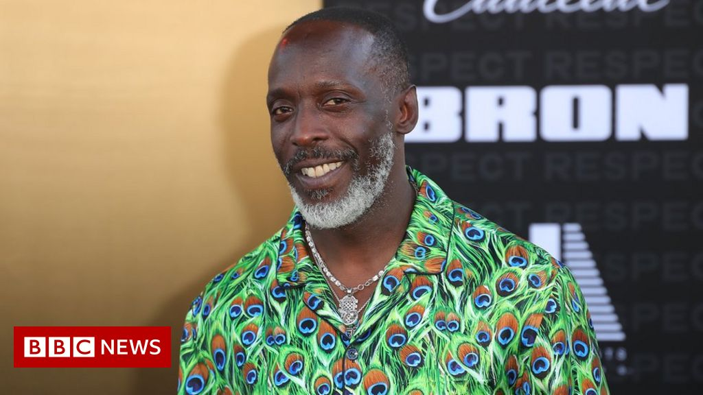 Actor Michael K Williams died of accidental drug overdose coroner confirms – BBC News