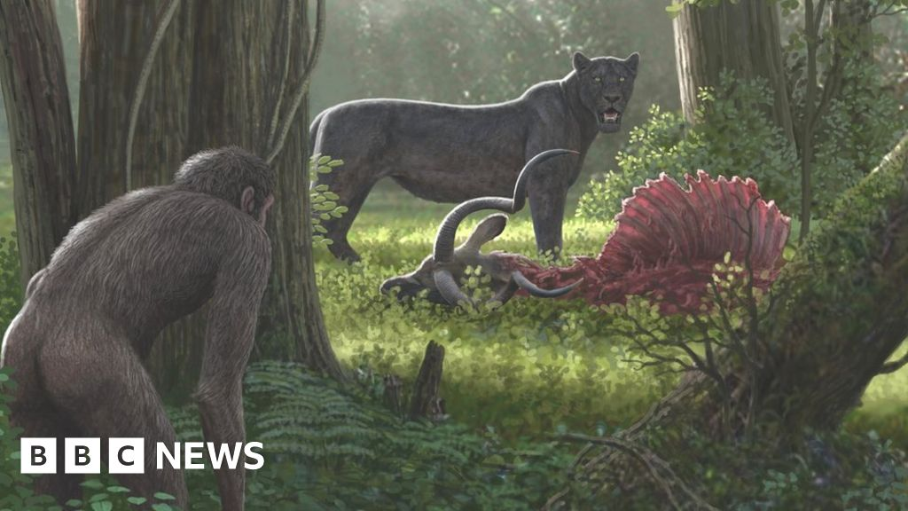 Human impact on nature 'dates back millions of years'
