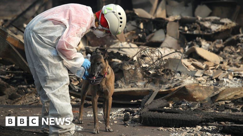 'More than 1,000 missing' in California fire