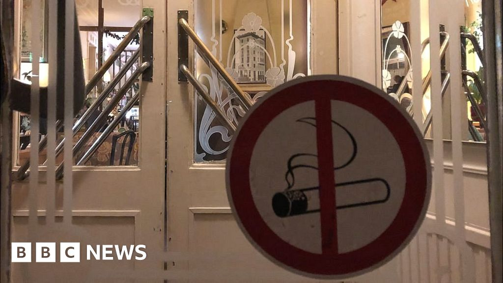 Smoking ban: Austria   s cafe society is calling time on cigarettes