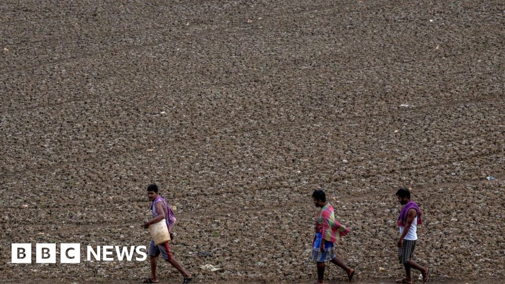 India water crisis flagged up in global report - BBC News