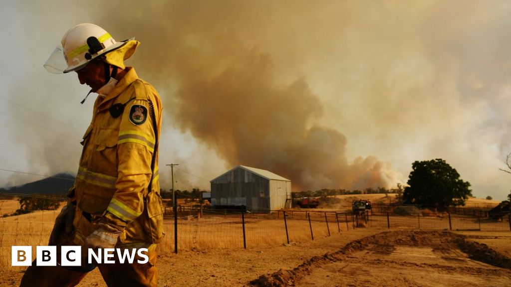 Australia fires: Is to blame for the fire Foundation?