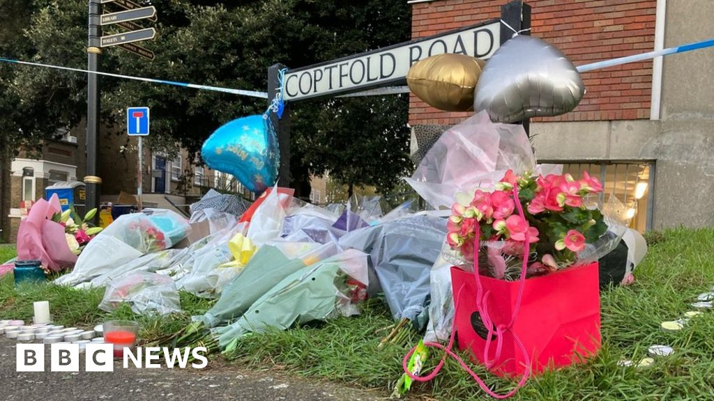 Brentwood murder investigation: Boys killed were 16, MP says.