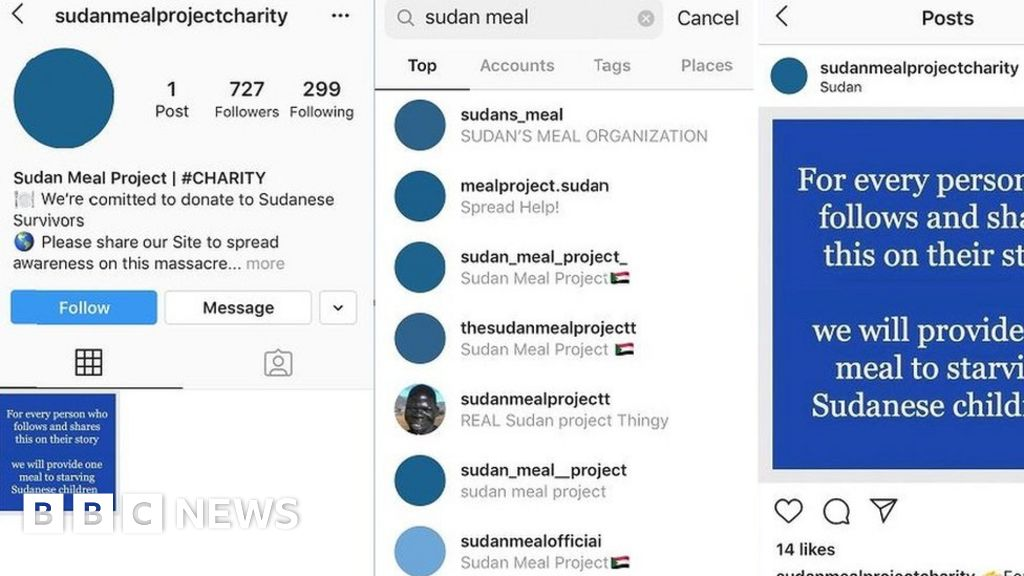 Blue for Sudan: Instagram 'Sympathy Scammers' Exploit Support for Protesters