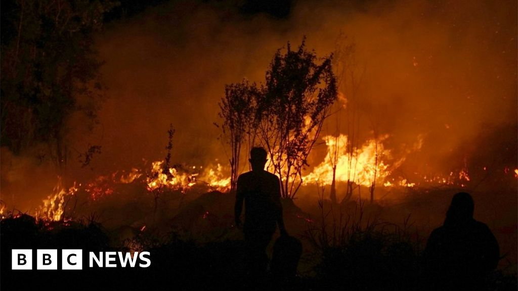 In pictures: Wildfires ignite across Indonesia