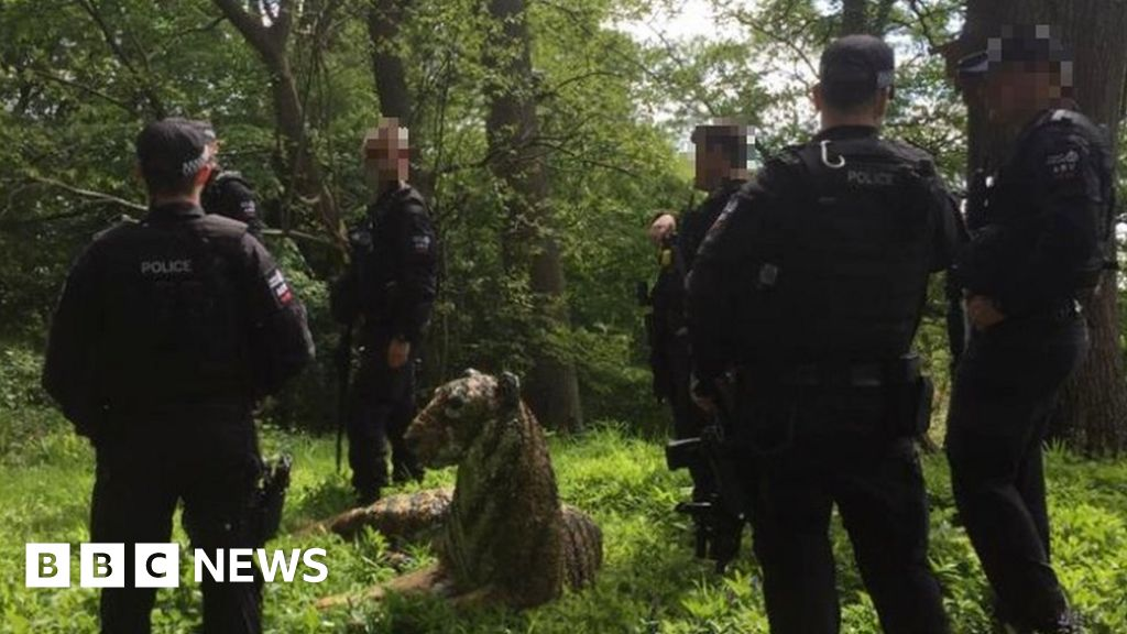 Under the river of the tiger sculpture sparks armed police response
