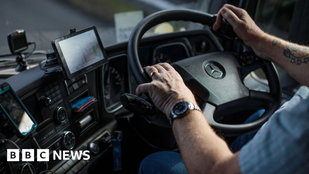 Hire UK workers to drive lorries, minister tells firms thumbnail