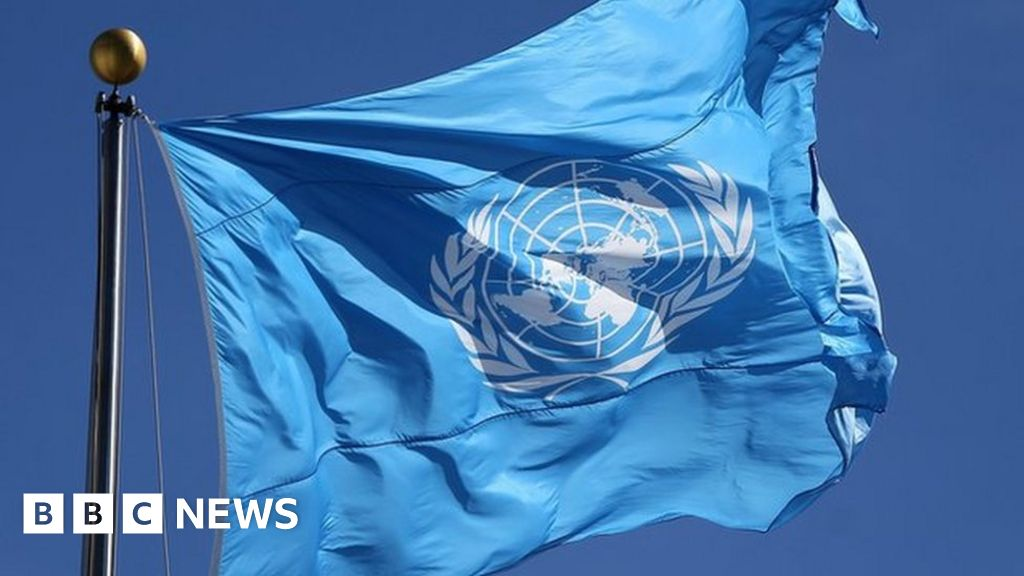 Ireland wins seat on the UN security Council
