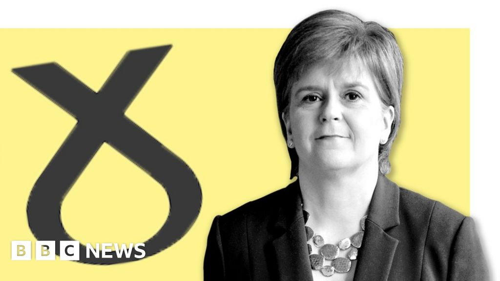 General election 2019: A simple guide to the Scottish National Party
