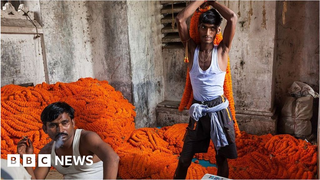 World Bank warns South Asia economic growth to collapse
