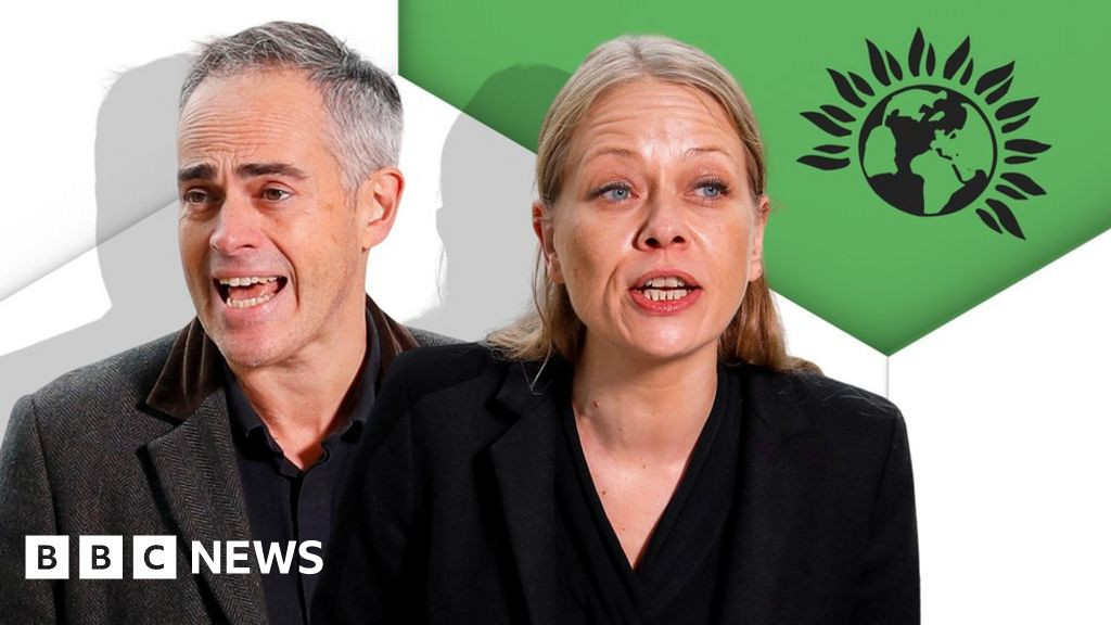 Green Party manifesto: The key policies explained thumbnail
