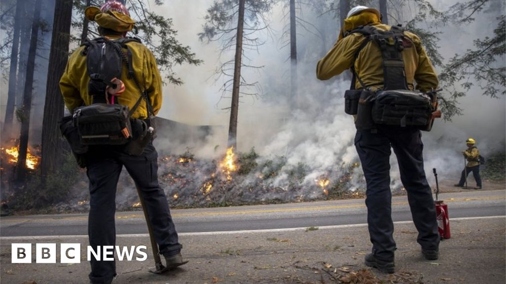 Gender reveal party blamed for California wildfire