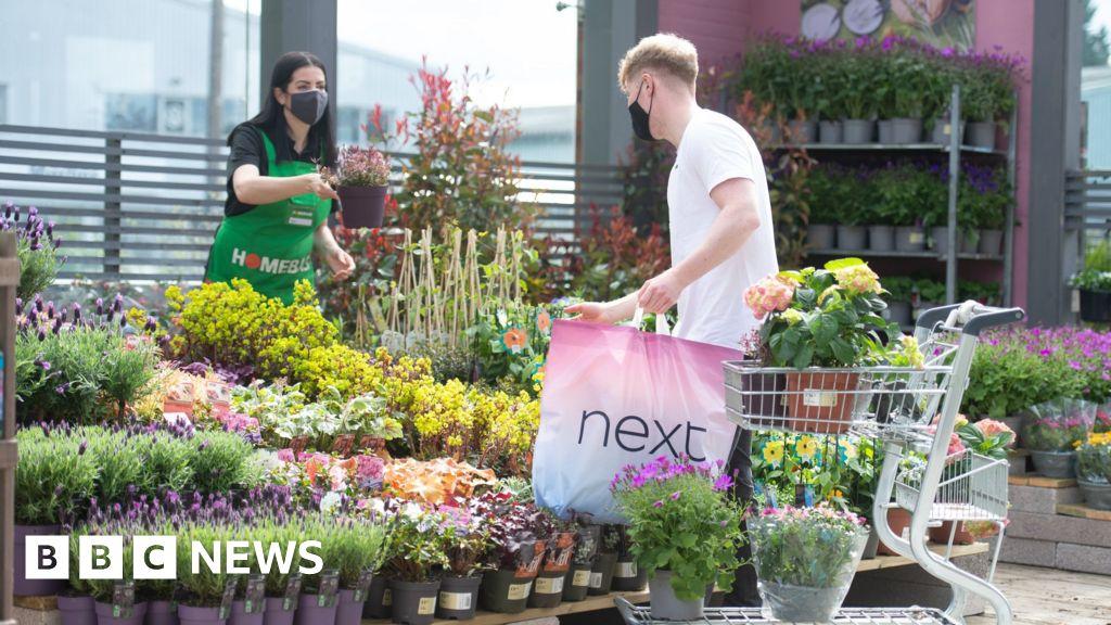 Homebase to put mini-garden centres at Next stores