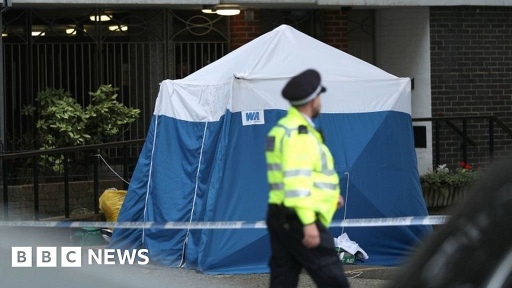 Chalk Farm stabbing: Woman arrested over fatal attack