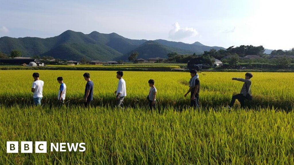 Coronavirus: The foster dad s house lesson 10 North Korean boys