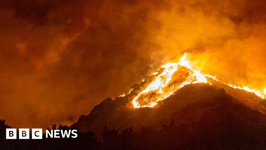 Climate change: 'Clear and unequivocal' emergency, say scientists